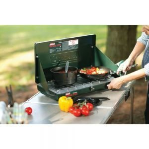 The 10 Best Portable Grills